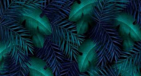 free download Tropical green leaves