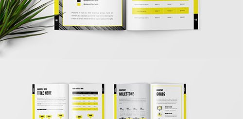 Yellow - Business Annual Report