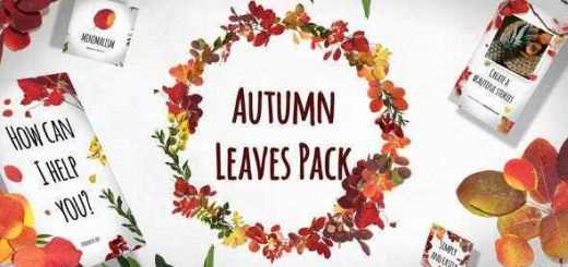 VIDEOHIVE AUTUMN LEAVES PACK